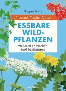 Morgane Peyrot / Anaconda Taschenführer Essbare Wildpflanzen. 70 Arten besti ...