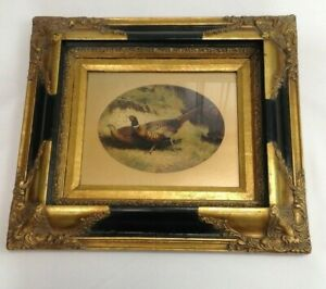 """Antique Carvers & Gilders Framed Picture of a Pheasant and Hen 17"""" by15"""""""