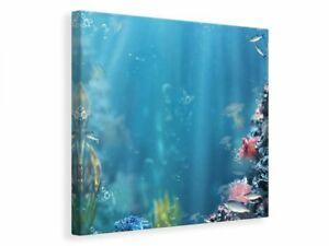 Leinwandbild Unter Wasser