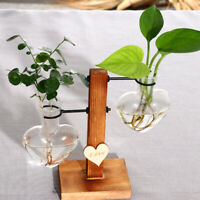 Herz Design Glas Reagenzglas Vase Blumentopf mit Holztablett Wasserspiel