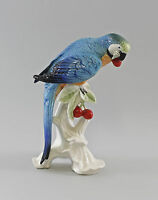 Figurine Porcelain Bird ARA with Cherries Turquoise Ens H25CM a1-97658