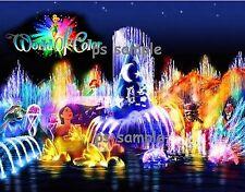 California - Disney WORLD OF COLOR # 3 - Flexible Fridge Magnet