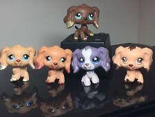 5 Littlest Pet Shop Cocker Spaniels Dogs 575-672-716-748-960 Snowflake-StarEyes