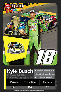 "Kyle Busch #18 2015 Sprint Cup Champion 4""x6"" Collector Stat Card Vinyl MAGNET"