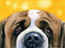 SAINT BERNARD DOG Watercolor 8 x 10 ART Print Signed by Artist DJR