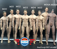 【EXPEDITED SHIPPING 】PHICEN TBLeague 1/6 Male MUSCULAR SEAMLESS Body