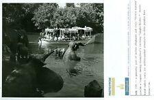 DISNEYLAND PARK THE JUNGLE CRUISE ELEPHANT SHOOTS WATER ORIGINAL '76 PRESS PHOTO