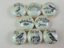 Set of 8 Vintage Birds of Beauty Cabinet  Knobs