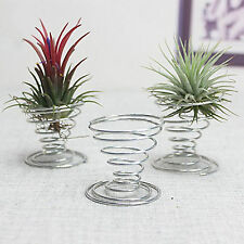 Air Plant Tillandsia Holder Container Flower Planter Home Office Decoration New