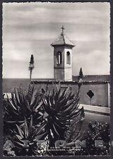 IMPERIA BORDIGHERA 84 CAPO AMPELIO - AGAVE Cartolina FOTOGRAFICA viaggiata 1963