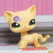 Hasbro Littlest Pet Shop Collection LPS Toys Shorthair Kitty Cat Purple Flower b