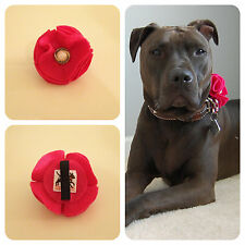 Hot Pink Button Collar Flower for Dogs -New- FREE SHIPPING