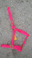 Arabian Horse & Cobb  HOT PINK  Adjustable HALTER WITH LEAD ~ MADE IN USA