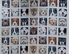 "New, 100% Cotton, Elizabeth's Studio, 44"", Assorted Dogs, 4 x 7 panels"