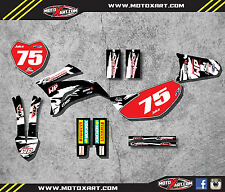 Yamaha TTR 125 / 2008 - 2016 sticker kit SAFARI style decals Fully Custom