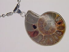 BUTW- Silver Ammonite nautiloid fossil 41mm  pendant necklace jewelry 6167K