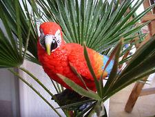 Papagei Ara Vogel Dekofigur Dekofigur, Gartenfigur  groß XXL 40cm