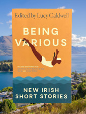 Book Various New Irish Short Stories By Lucy Caldwell