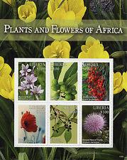 Liberia 2015 MNH Plants & Flowers Africa 6v M/S Poppy Bay Laurel Thistle Stamps