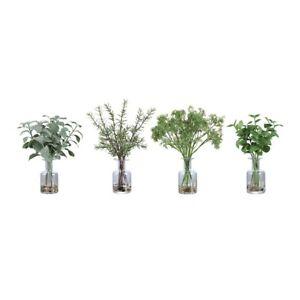 Uttermost Ceci Kitchen Herbs, Set of 4 - 60148