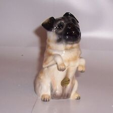 John Beswick Pampered Pooches Pug Fawn JBPP2FAW