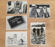 """25 New Postcards ~ 4"""" x 6"""" Great for Sweepstakes ~ FAST FREE SHIPPING"""