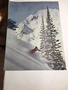 Vintage Original Ski Poster Mountain Deep Pow Pow Skier Among The Trees 1960s