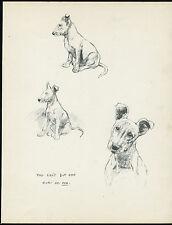 BULL TERRIER CHARMING IMAGES LOVELY VINTAGE 1930'S DOG ART PRINT by KF BARKER