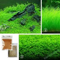 10g Water Grass Seeds Live Plant Fish Tank Aquarium Landscape Decor Ornament