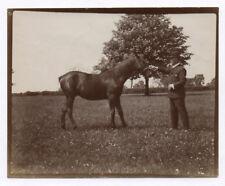 PHOTO ANCIENNE Cheval de course RACE Hippisme Équitation Vers 1900 Animal