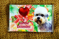 Dandie Dinmont Terrier Gift Dog Fridge Magnet 77x51mm Birthday Gift Mothers Day