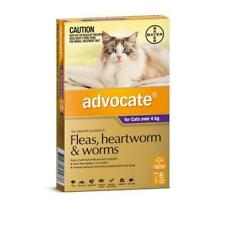 Advocate 6 Pack Large Cats over 4kg for fleas, heartworm and worms