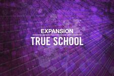 Native Instruments Expansion - True School