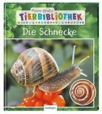 Meine große Tierbibliothek: Die Schnecke   Sachbuch für Vorschule & Grundschule