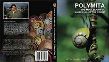 POLYMITA, the most beautiful landsnail in the world. Nature, liguus, seashells