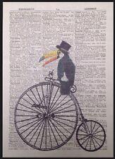 Vintage Tucán Diccionario imprimir página Pared Arte Imagen Penny Farthing Pájaro Bicicleta