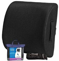 Memory Foam Lumbar Support Cushion, Travel Lower Back Pain Relief Posture Pillow