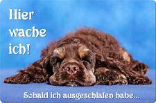 COCKER Spaniel - A4 Metall Warnschild Hundeschild SCHILD Türschild - CKS 01 T15