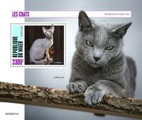 Niger Cats Stamps 2020 MNH Sphynx Blue Russian Cat Pets Domestic Animals 1v S/S