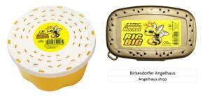 FTM  Hornet Bienenmaden / BIG BIG  Bienenmaden Forellenköder