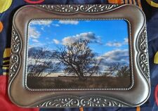 5x7 photograph in vintage silver colored metal frame.  Wise Old Tree taken in IL