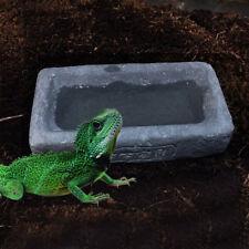 Reptile BOL D'alimentation nourriture EAU PLAT ORNEMENT résine pour tortue