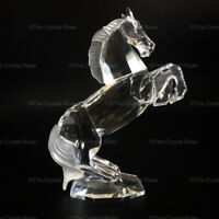 RARE Retired Swarovski Crystal White Stallion 174958 Mint Boxed Horse