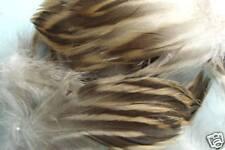 2g Plumes de FLANC CANE (mallard hen) montage peche fly fishing tying feather