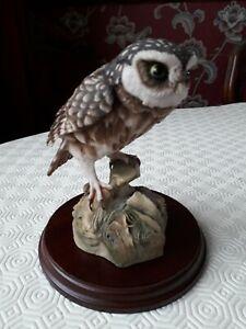 Teviotdale  Owl designed by Debbie Edllmann c1985