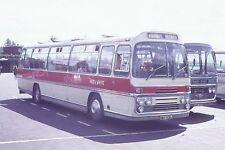 RED & WHITE XWO936J 6x4 Quality Bus Photo