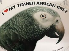 Timneh African Grey Parrot Exotic Bird Vinyl Decal Bumper Sticker