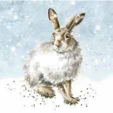 """Wrendale Designs Christmas Card Box Set of 8 Cards """"Winter Hare"""""""