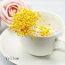 280/bundle Artificial Flower Stamen Double Tip Pearlized Craft Cards Cake Decors