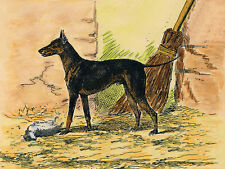 MANCHESTER TERRIER CHARMING DOG GREETINGS NOTE CARD LOVELY STANDING DOG